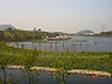 湖水净化及生态修复